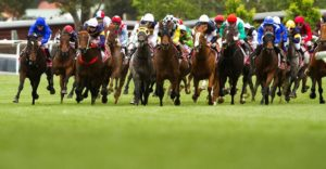 Top 8 Venues to Celebrate Melbourne Cup